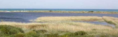 Riserva Naturale Le Cesine e Porto Cesareo (Le)